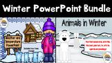 Winter Bundle PowerPoints (Animals in Winter and Winter We