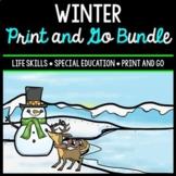 Winter Bundle - Special Education - Life Skills - Print & Go - Math - ELA