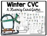 Penguins Phonics Activity for CVC