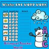Winter CVC Word Work