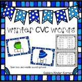 Winter CVC Words Activity