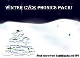 Winter CVCe Phonics Pack