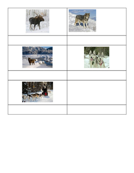 Winter Camp Response Journal