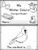 Winter Colors Emergent Reader