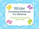 Winter Correcting Sentences for Grammar Mittens