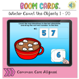 Winter Count the Objects 1 to 20 BOOM LEARNING CARDS Activity