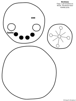 Winter Craft: 5 Senses of a Snowman