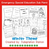 Winter Emergency Sub Plans for Special Education Classrooms