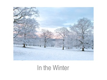 Winter Emergent Reader Book