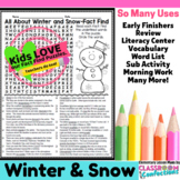 Winter Activity: Winter Word Search (non-fiction, reading facts)