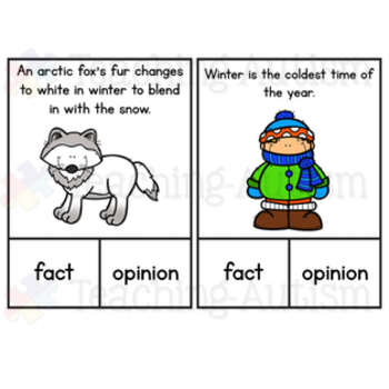 Winter Fact or Opinion Task Cards