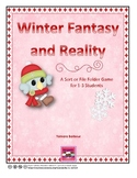 Winter Fantasy and Reality