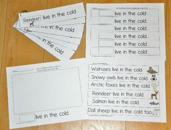 Winter Fluency Activities II