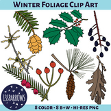Winter Foliage Clip Art