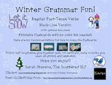 Winter Grammar Fun Reg PT B&W Flash Cards