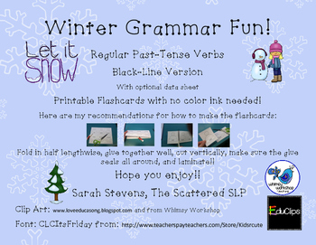 Winter Grammar Fun Reg PT B&W Flash Cards