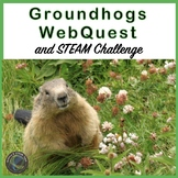 Distance Learning: Groundhog Facts WebQuest and STEM / STEAM Challenge