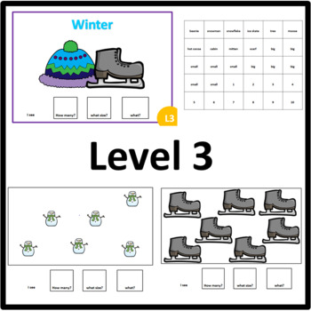 Winter HOW MANY, WHAT SIZE, WHAT? Adapted book Level 1, Level 2 and Level 3