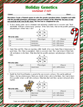 Winter Holiday Genetics  Punnett Square Worksheet FREEBIE