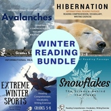 Winter Informational Reading Bundle