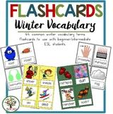 Winter Vocabulary Flashcards