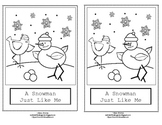 Winter Kindergarten Emergent Reader