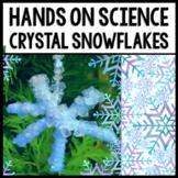 Winter Life Skills Reading, Procedural Writing, and Science: Borax Snowflakes