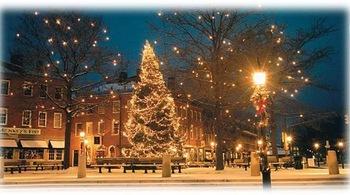 Winter Lights Christmas Village