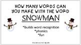 Winter Literacy Activity