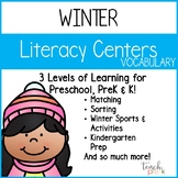Winter Literacy Centers: Vocabulary for Preschool, PreK, K & Homeschool