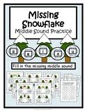 Winter Middle Sound/Short Vowel Practice {Missing Snowflak