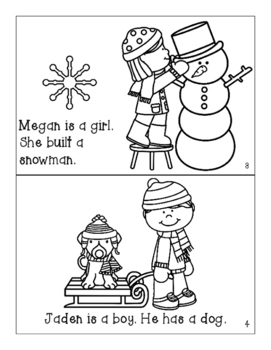 Winter Mini-Books for Gender/Pronouns and Basic Concepts