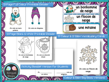 Winter Mini Reader, Vocabulary Cards & Reading Assessment