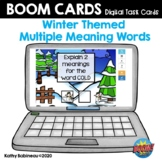 Winter Multiple Meaning Words Boom Cards