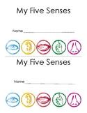 Winter - My Five Senses