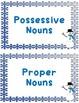 Winter Nouns - Possessive, Plural, and Proper Nouns Review