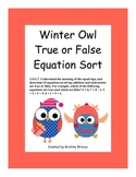 Winter Owls True False Equation Sort