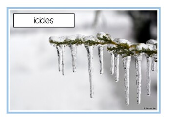 Winter Photo Set