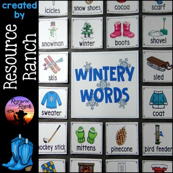 Winter Picture Word Cards and Writing Activities