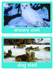 Winter Picture Word Wall Cards are perfect for PreK to 2nd Grade.