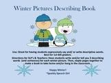 Winter Pictures Describing Book #sbdollardeal