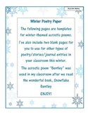 Winter Poetry Paper