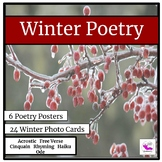Winter Poetry Unit Using Photographs
