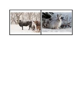 Winter Prepositions - Montessori Sentence Building Activity