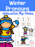 Winter Pronoun Flip Book!