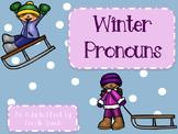 Winter Pronouns Interactive Book