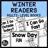 Winter Readers  (Multi-Level Books)