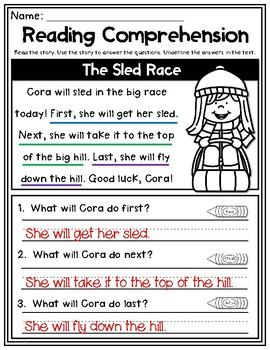 Winter Reading Comprehension Freebie