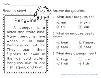 Winter Reading Comprehension Passages First Grade