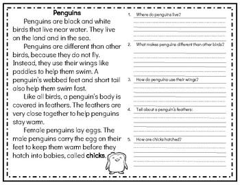 Winter Nonfiction Reading Comprehension Passage & Questions BUNDLE!
